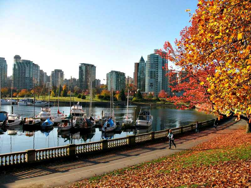 Stanley Park Photos Vancouver Travel Tips