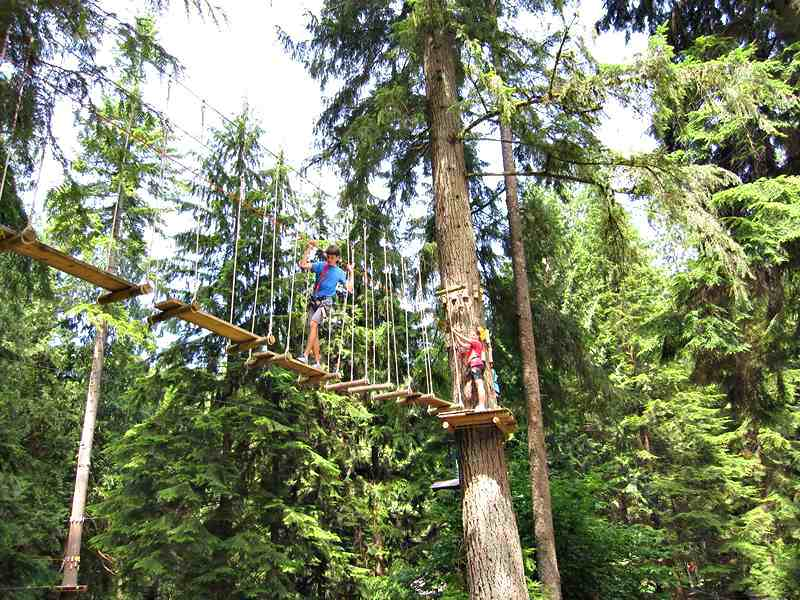 Wildplay Maple Ridge Swinging Tree Bridge