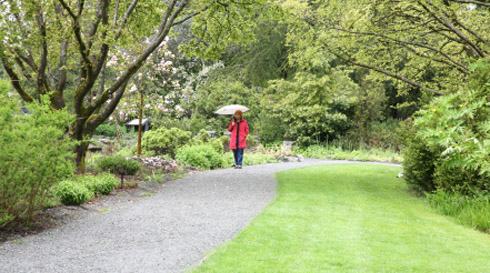 Top 10 things to do in vancouver the rain
