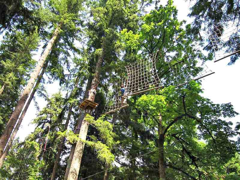 Wildplay Maple Ridge Tree top Net Climb