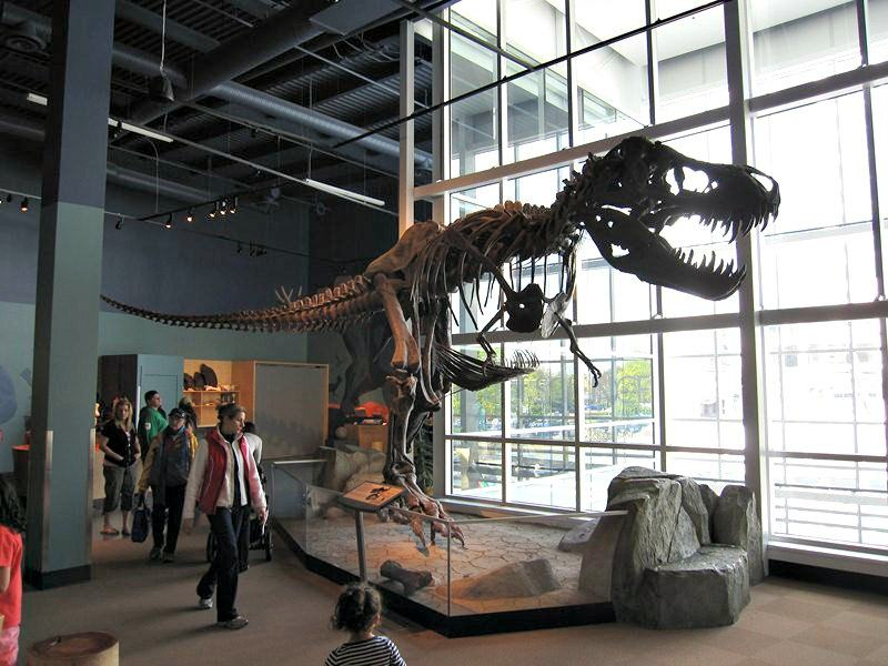 T-REX at Science World